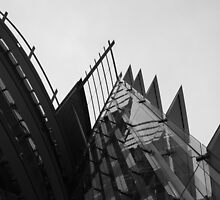 Black and white geometries by vesa50
