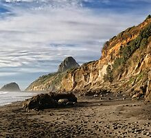 Back Beach Coastline by Dean Mullin