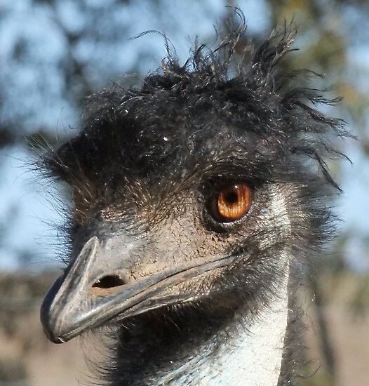 """""""Look what the emu oil did to my hair!"""" by Enivea"""