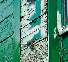 Peeling flaking paint on Green Train trailer by buttonpresser