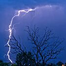 17th Street  Lightning Strike by Bo Insogna