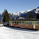 Lauterbrunnen to Murren train, Switzerland by buttonpresser