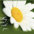 Peace Daisy by SandraRose