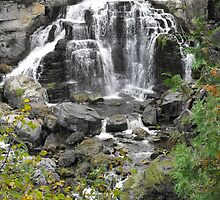 Ingills Falls - Owen Sound Ontario by Tracy Faught