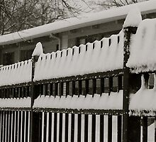 Snow on the fence 2 by Dian  Squire