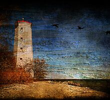 Presqu'ile Lighthouse by Lois  Bryan