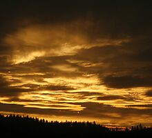 Eugene sunset by fototaker