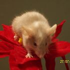 christmas mouse by Maddison Gangi