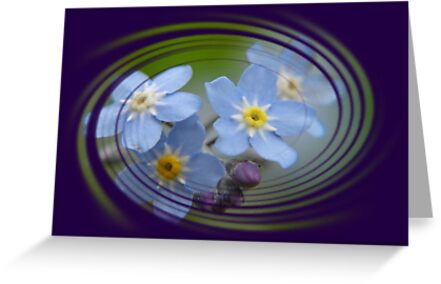 Forget-Me-Not - Greeting Card by taiche