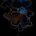 Neon Butterfly by Charles Dobbs Photography