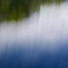 The Pond by Lynn Wiles