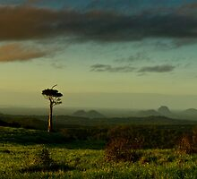 Glasshouse Mountains by Keith Rowell