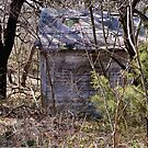 # 7599 Abandoned Well House by Jerry Vaughn
