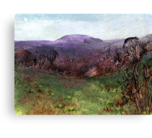 Moorland View 3 Canvas Print