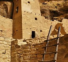 Cliff Palace Tower at Mesa Verde NHS by Gregory Ballos | gregoryballosphoto.com