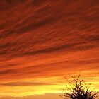 Arizona sky by Ann Nelson