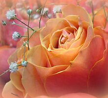 A Garden of Roses by Kathy Bucari