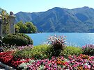 The Shores of Lake Lugano by Lucinda Walter