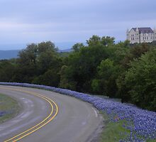 Falkenstein Castle and Texas Bluebonnets on Park Road 4 by BrigitteinTexas