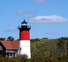 Cape Cod Lighthouse by Tricia Stucenski