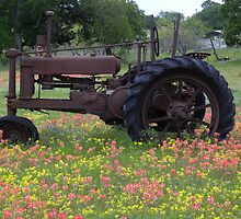 Farm Tractor and Indian Paint brushes by BrigitteinTexas