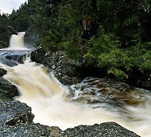 Dove Canyon & the Pencil Pine Creek by Robert Mullner