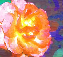 Abstract of full pink and peach rose by ♥⊱ B. Randi Bailey