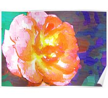 Abstract of full pink and peach rose Poster
