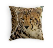 Well, almost grown up........ Throw Pillow