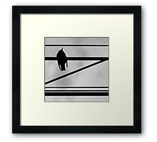 OnePhotoPerDay Series: 136 by L. Framed Print
