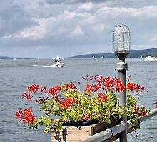 Seneca Harbor by Monnie Ryan