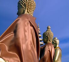 The Three Buddhas by Diane  Holdsworth