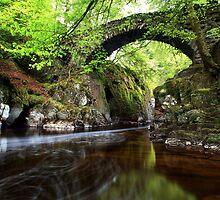 Hermitage Bridge Dunkeld by Angus Clyne