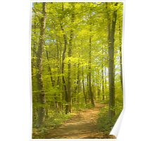Spring Trail_1 Poster