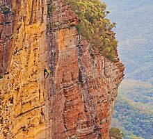 A Little Bit of Abseiling by jayneeldred