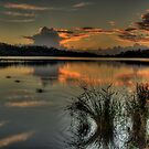 The Shallows - Narrabeen Lakes , Sydney - The HDR Experience by Philip Johnson