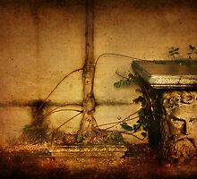 The Grim Creeper by Angie Muccillo