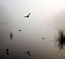 Lake Scene by Andrew Simoni