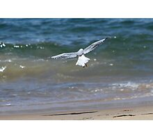 Beach Landing Photographic Print