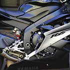 Yamaha R6 by Mark  Lucey