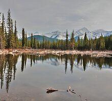 Beaver lake by zumi