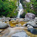Dorothy Falls, Westland by Paul Mercer