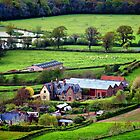 Images of Dorset UK by Clive