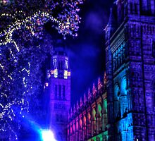 Natural History Museum, London, By Night by Lucy Martin
