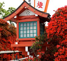 Azaleas and Lanterns at Nagaoka Tenmangu by nekineko