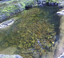 Rockpool On The Riverbed by Ambellina