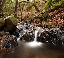 UVAS CANYON closer look at small dual waterfall light water flow in the Fall by OPTATIVE