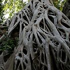 Angkor Wot  by weesha