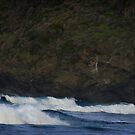 Surf, Blinky Beach, Lord Howe Island by TimC