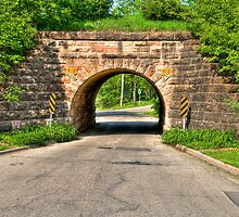 Lakeview Park Tunnel by ECH52